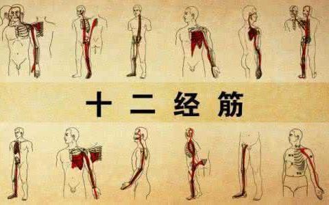 经常脖子痛、腰痛、头痛……?一个动作帮你缓解,请收好
