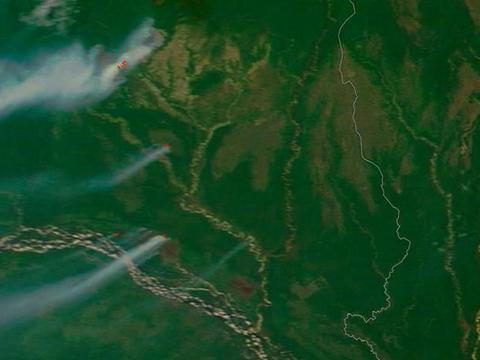 热带雨林在缩小,巴西毁林率增长29.54%,地球气候或大变,咋办