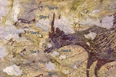 印尼发现的一幅壁画,也许要改变人类进化论了吗?这也太神奇了