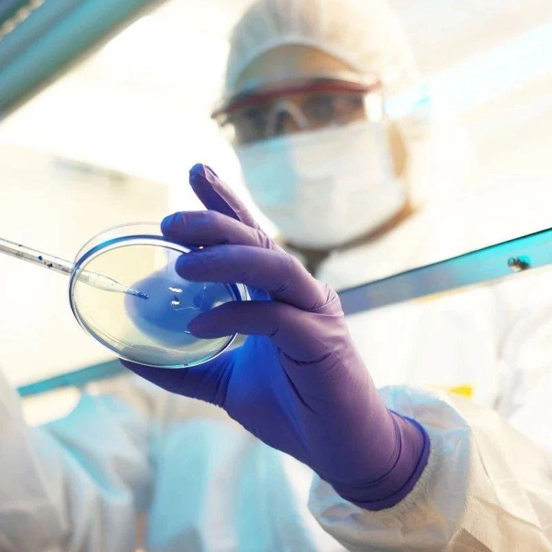 【科学美国人】新型冠状病毒可能会在全球持续传播?