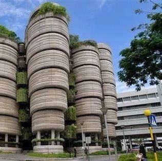 新加坡新冠肺炎疫情愈发严重,南洋理工大学、新加坡管理大学首次采取线上模式进行开放日活动
