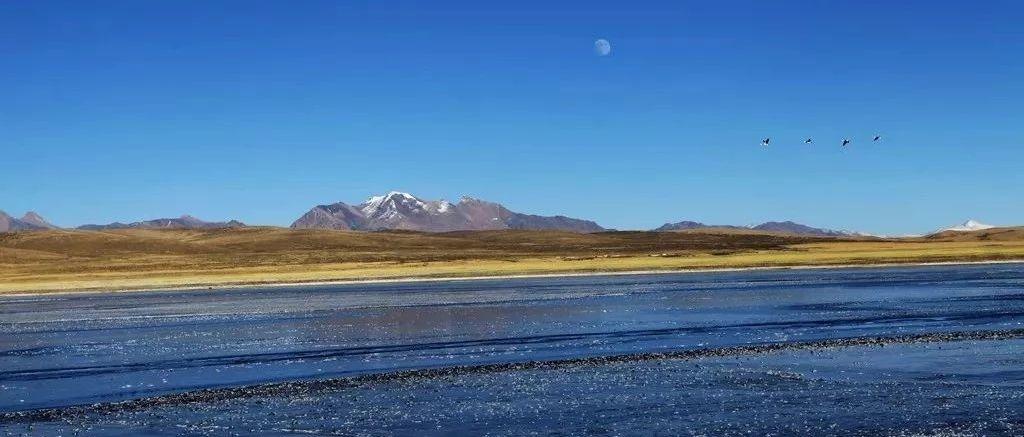 待山河无恙,我们共赴西藏