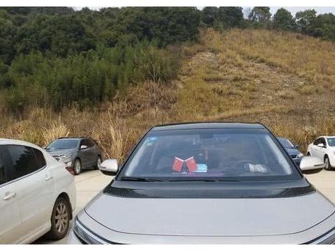 7万提一辆6座车,10.25英寸大屏+双色车身,邻居都以为是进口车!