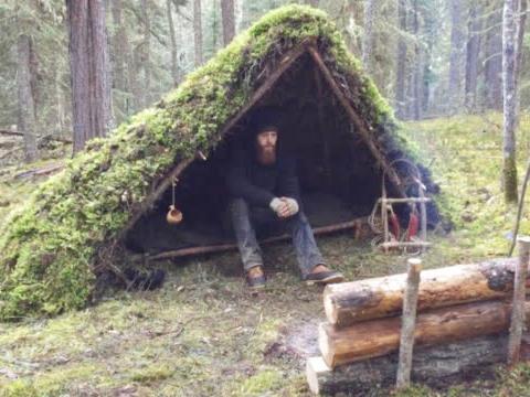冬季丛林搭建庇护所过夜,盖上厚厚的苔藓保温,生堆篝火煎肉吃