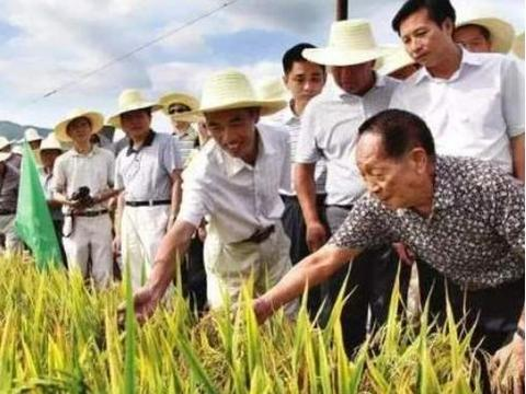 都是人口大国,为何印度向全球出口粮食,而中国要满世界买粮食