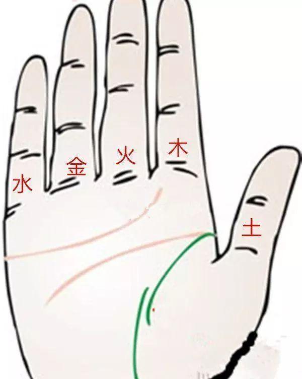 """手相解析:""""一眼""""定学业,""""三纹""""定终身,命运就在你手中!"""