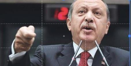 埃尔多安要求叙利亚撤军伊德利卜,强调这是自己的领土