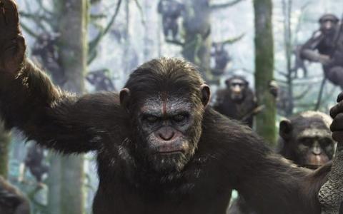 猿族的战争仍未停止!全新的《猩球崛起》系列来了