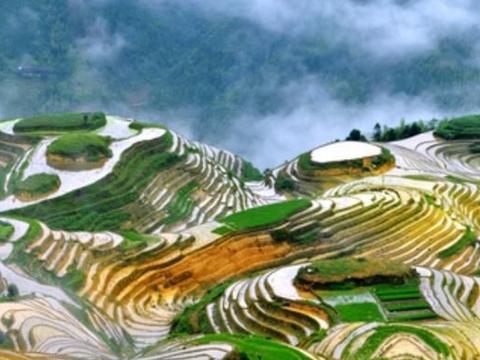 """中国""""生育率第一""""省份,环境优美适合居住,人均收入却是倒数"""