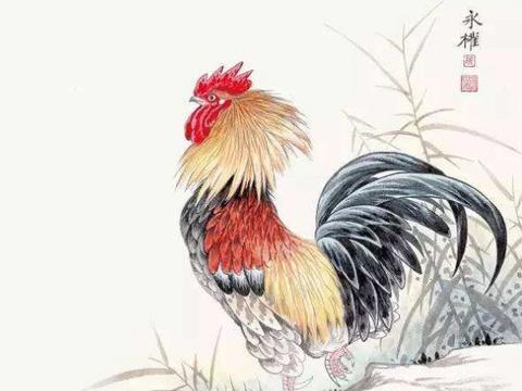 生肖鸡鸡,2020年2月上旬有大新闻赖上你,都是上天的安排!