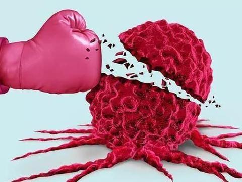 如何区分良性肿瘤与恶性肿瘤?罹患肿瘤后如何应对呢?
