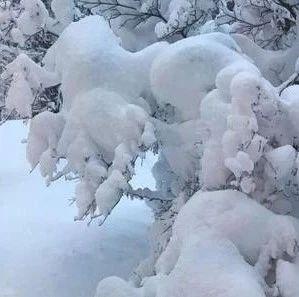 @长春人,明日有大雪!