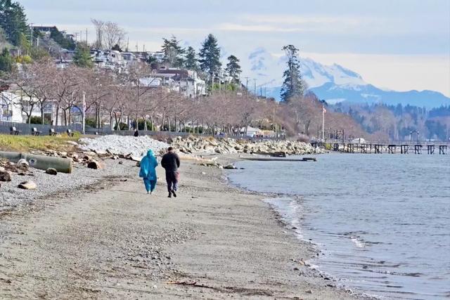 北温vs白石vs措瓦森:谁是大温「最佳养老社区」?详细对比告诉你