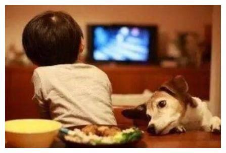 """拒绝隔代宠,应采儿""""虎妈式教育""""圈粉,吃饭也能体现孩子的教养"""