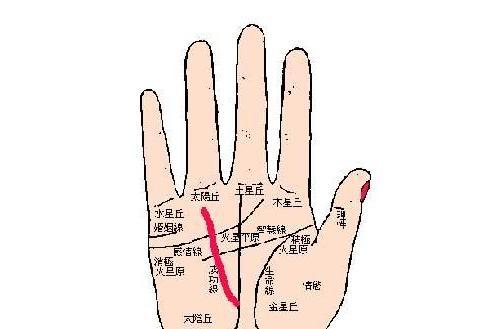 女人想要嫁的好,那么你有以下的手纹吗?