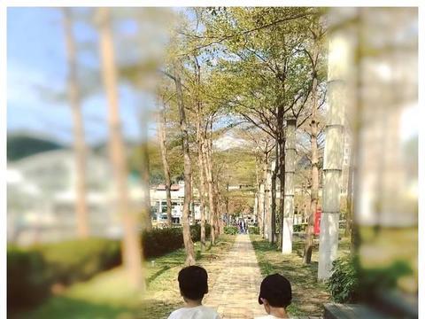 林志颖晒双胞胎儿子近照,模样可爱像娃娃,网友:林志颖基因强大