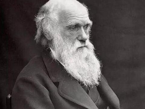 """原谅我啥都不懂,达尔文""""全才""""的奇妙人生,带你了解物种起源"""