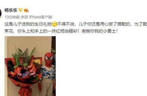 杨乐乐41岁生日晒儿子不提汪涵,5岁沐沐扮蜘蛛侠搞怪身高瞩目