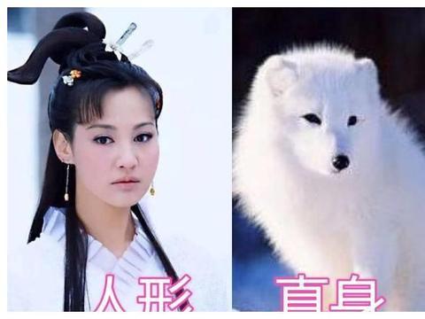 活佛济公:人形VS真身,白雪没啥,看到这位:鸡皮疙瘩起来了!