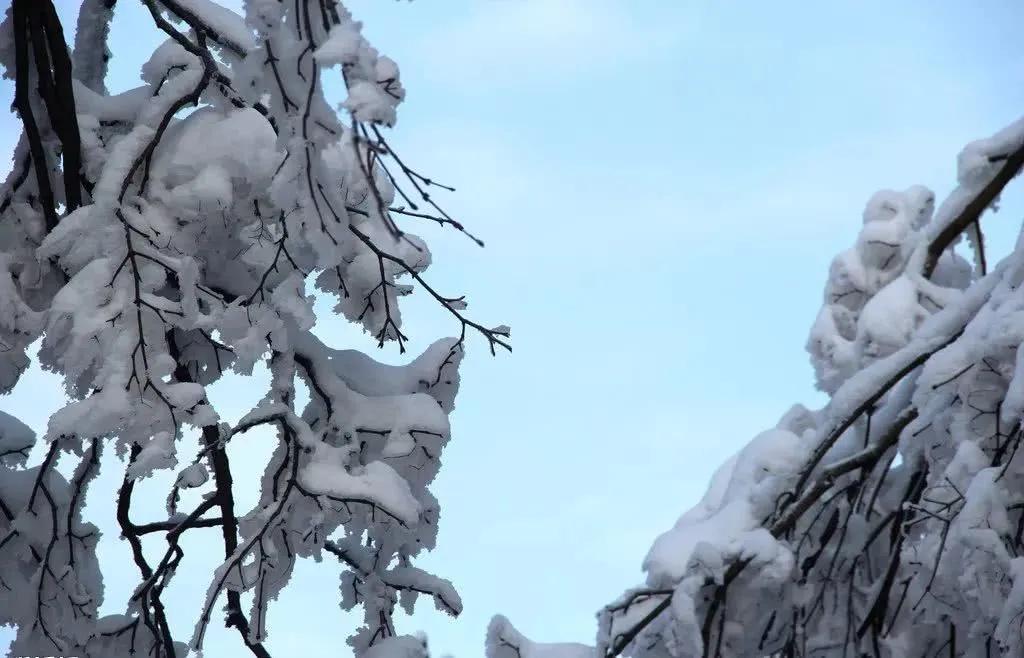 峨眉山雪后美景,简直就是人间仙境!
