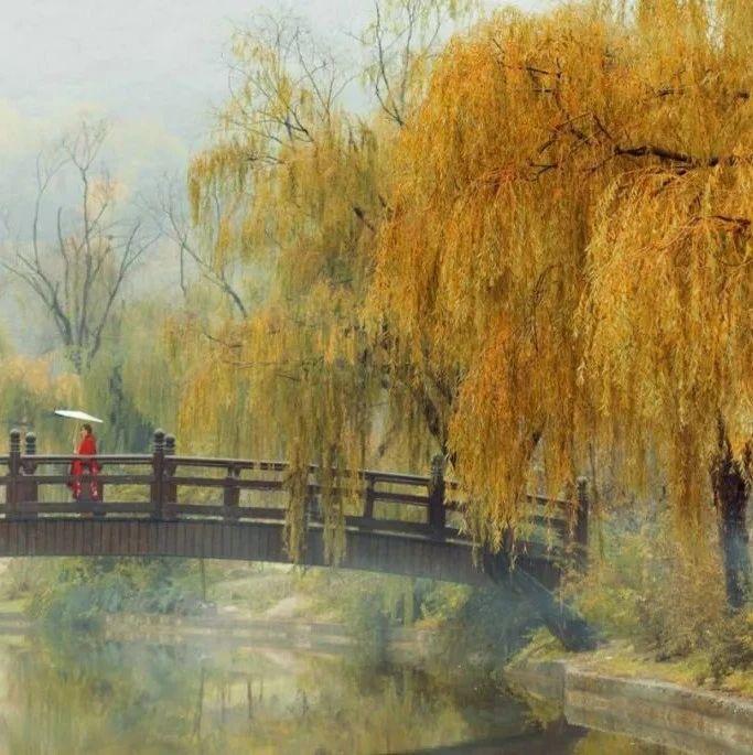 中国五千年跳不出的5大历史定律(因果惊人)
