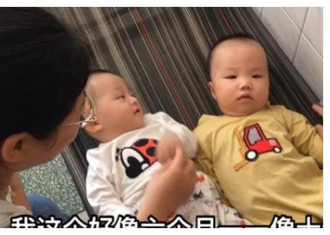 半岁宝宝,一个母乳喂养,一个奶粉喂养,没有对比就没有伤害