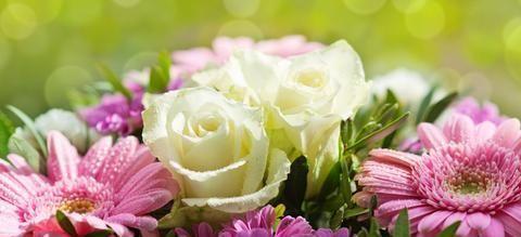 善心,是抢不走的优势;人品,是花不完的财富