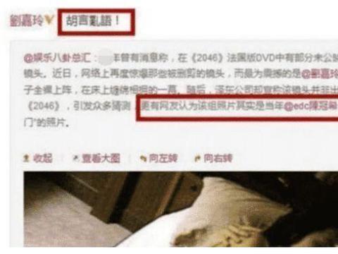 时隔12年,刘嘉玲和陈冠希昔日的不雅照片被传出?两人回应四个字