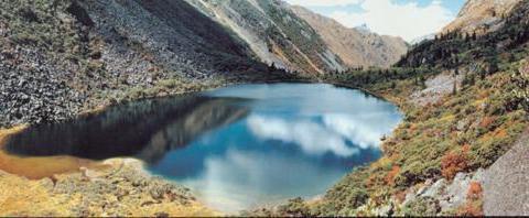 猎塔湖的水怪,千年古寺的千年经文,曾经记载着一次目击