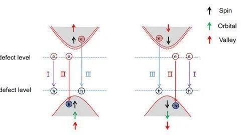 进展   单层WSe2中单光子发射中心的辐射复合机理取得进展