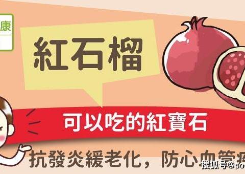 可以吃的紅寶石,抗發炎緩老化,防心血管疾病-罗速优罗伊氏乳杆菌