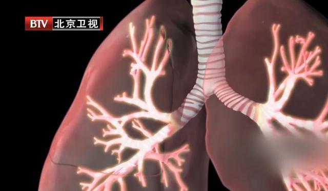 """这些""""肺部救星"""",近期一定常吃!每天搓搓手,提高肺功能"""