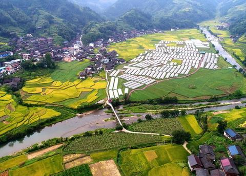 芙蓉村和芙蓉镇,两个千年古村,风格一点都不一样