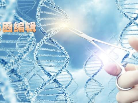 什么是基因编辑技术,我们到底能用它做些什么?