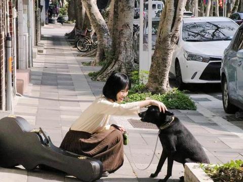 谢震廷女友爱犬走失超心酸 摄影替流浪毛小孩找家