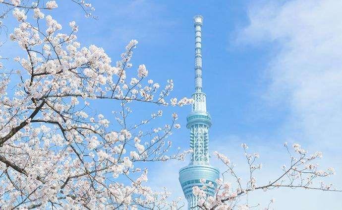东京迪士尼将关闭,天窗树停业,富士见庄破产,日本现在有多糟糕