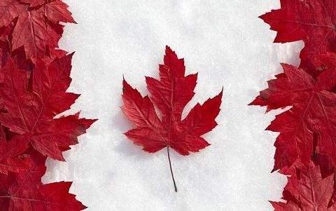 给加拿大送钱,人家却不要?你的投资移民签证被拒原因找到了!