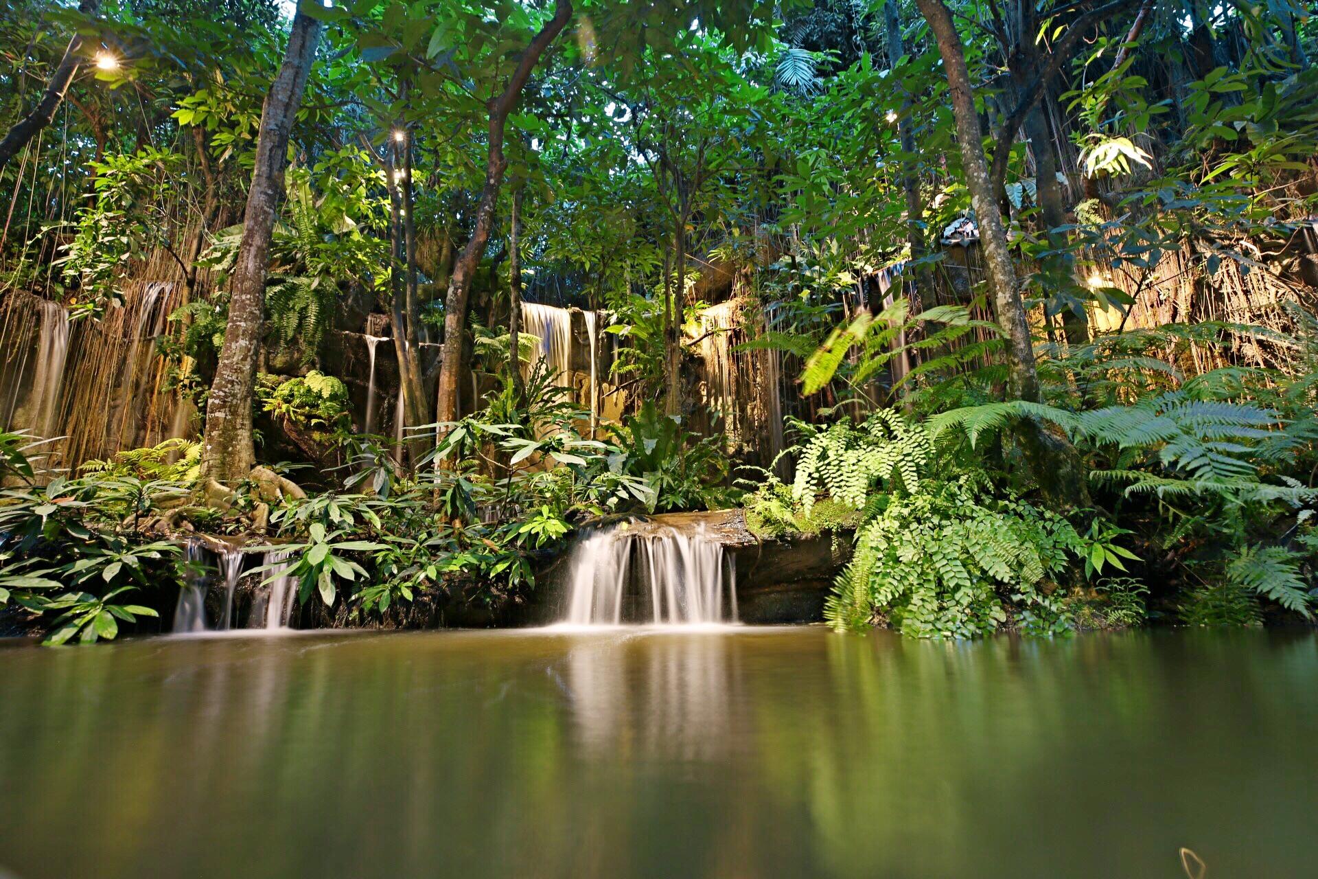 泰国khaomao-khaofang restaurant网红餐厅黑森林整个图片