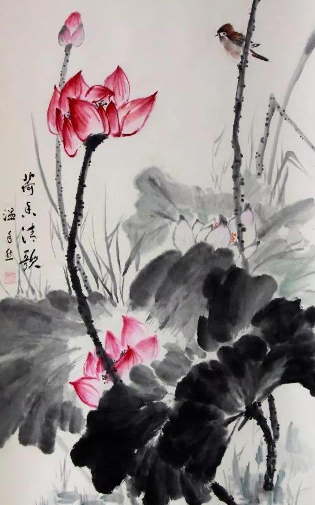 红芙蓉图绘画步骤
