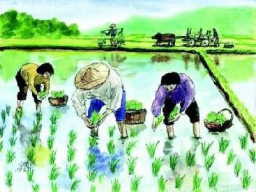 十二首描写乡村生活的古诗词,热爱劳动,看最美