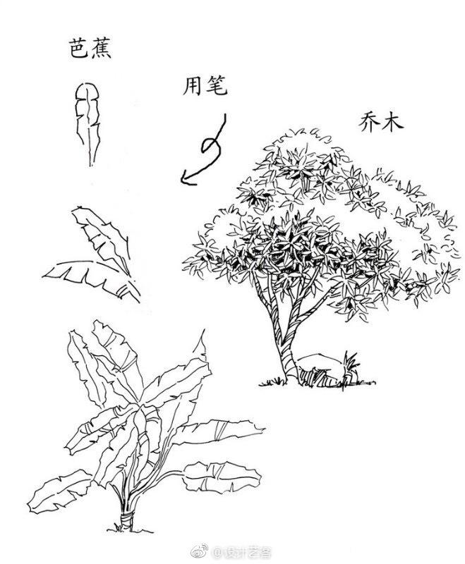 绘画  灌木的手绘笔法图解