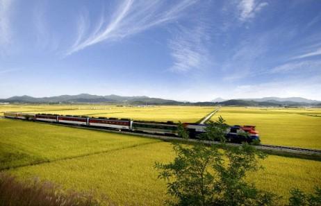 暑期旅游火热进行中,8月热门线路加开多趟列车助力旅行!