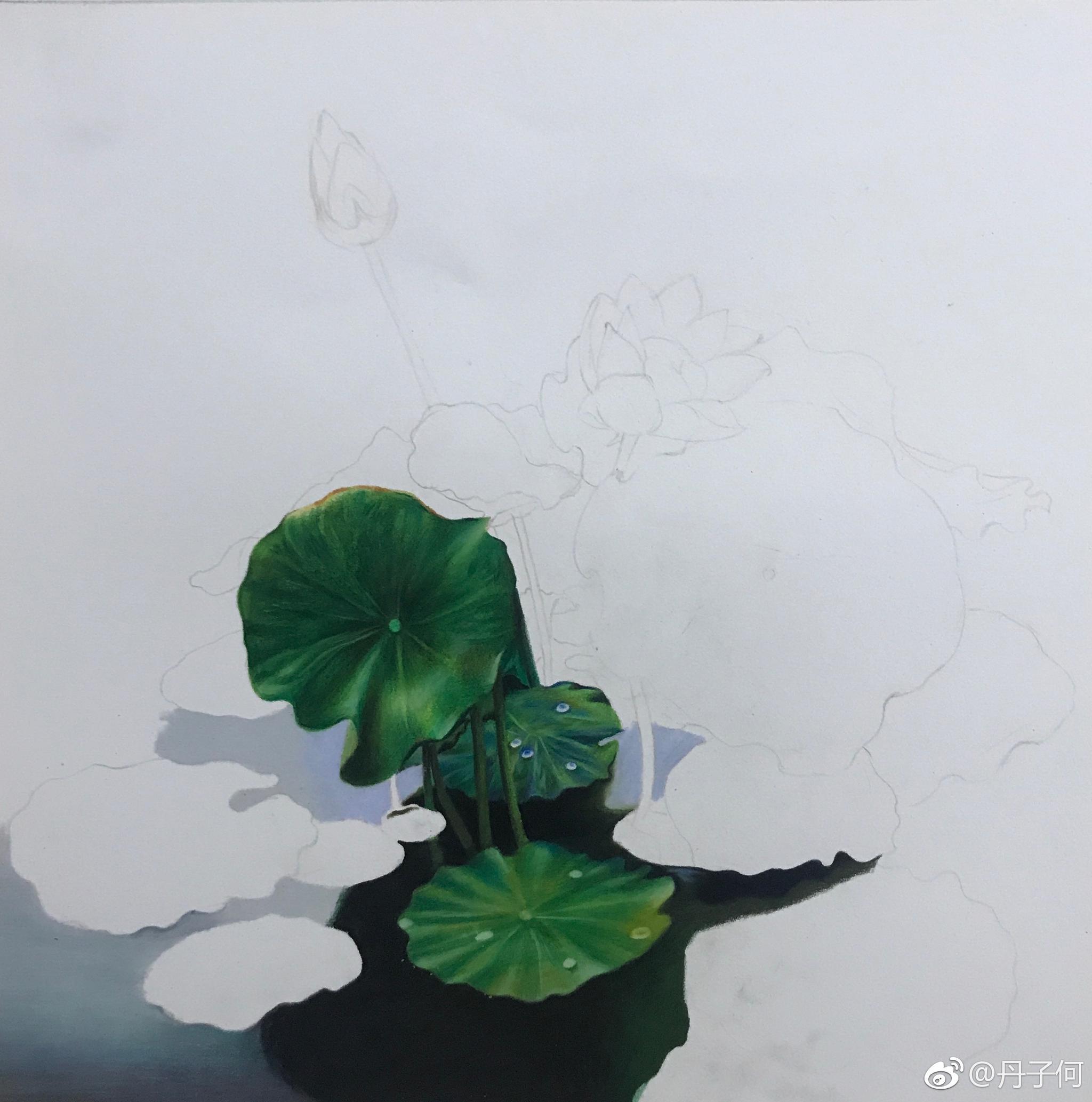 荷塘一角 霹雳马彩铅手绘投稿