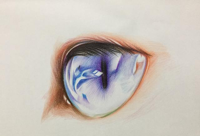 彩铅手绘猫咪眼睛过程图