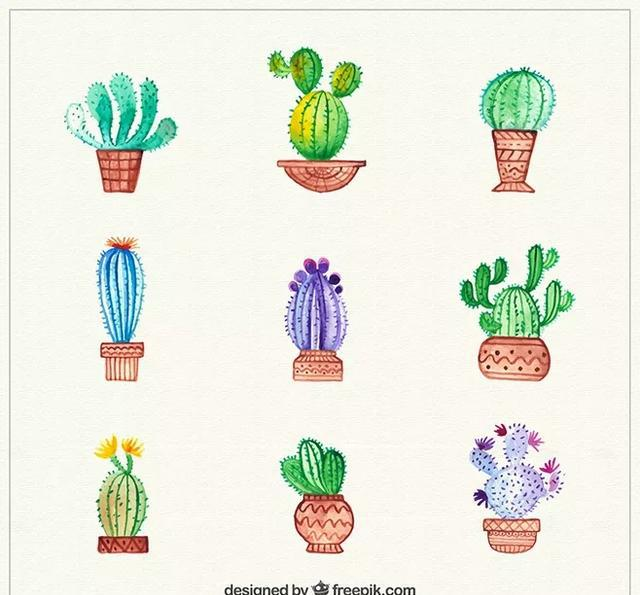 150种萌萌哒多肉手账手绘素材分享,让你1分钟学会画画