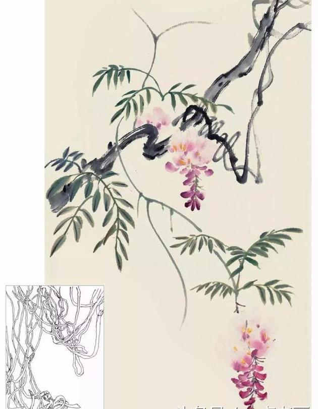 国画入门丨紫藤花的写意画法
