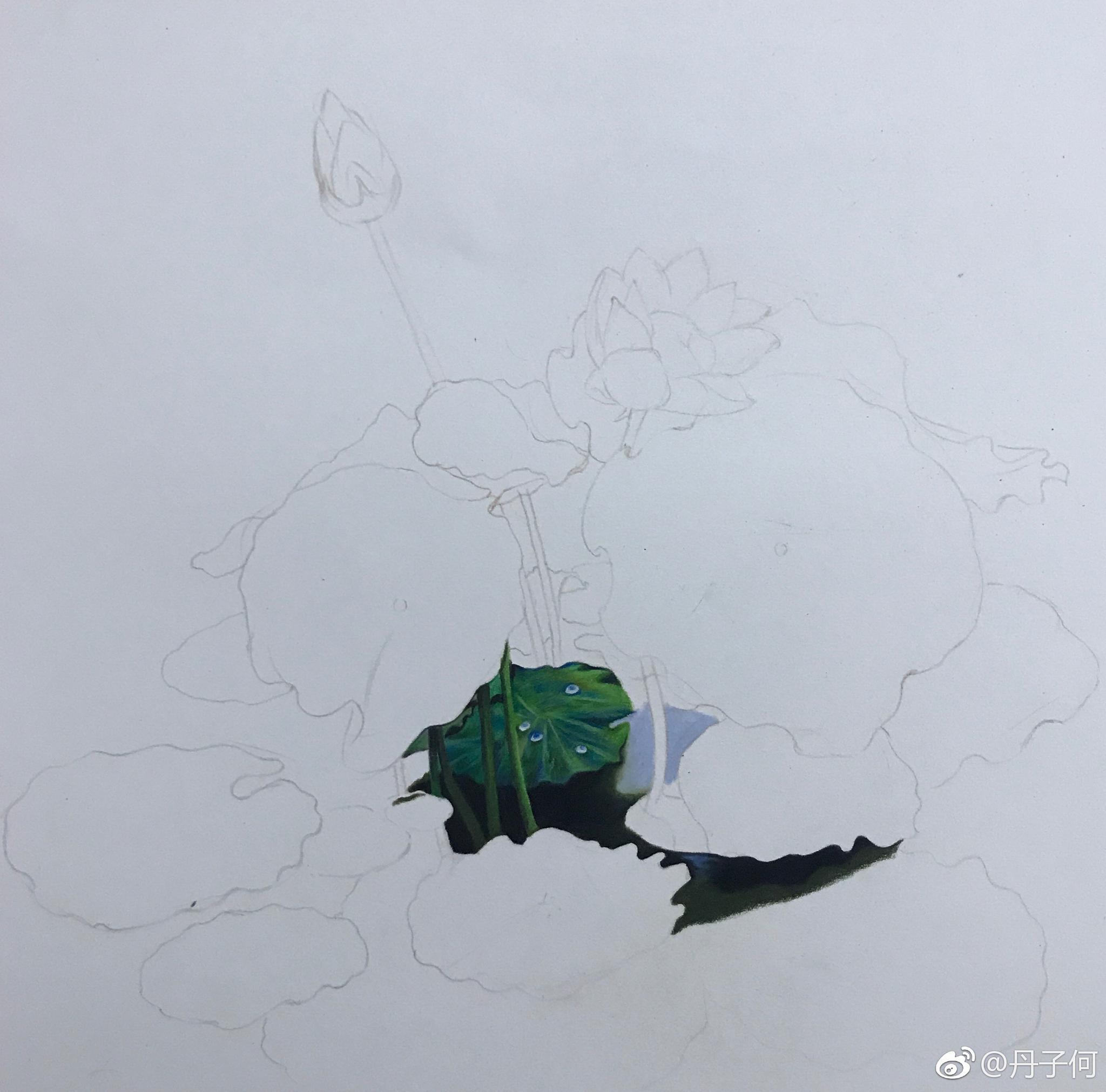 荷塘一角 霹雳马彩铅手绘投稿(_新浪看点