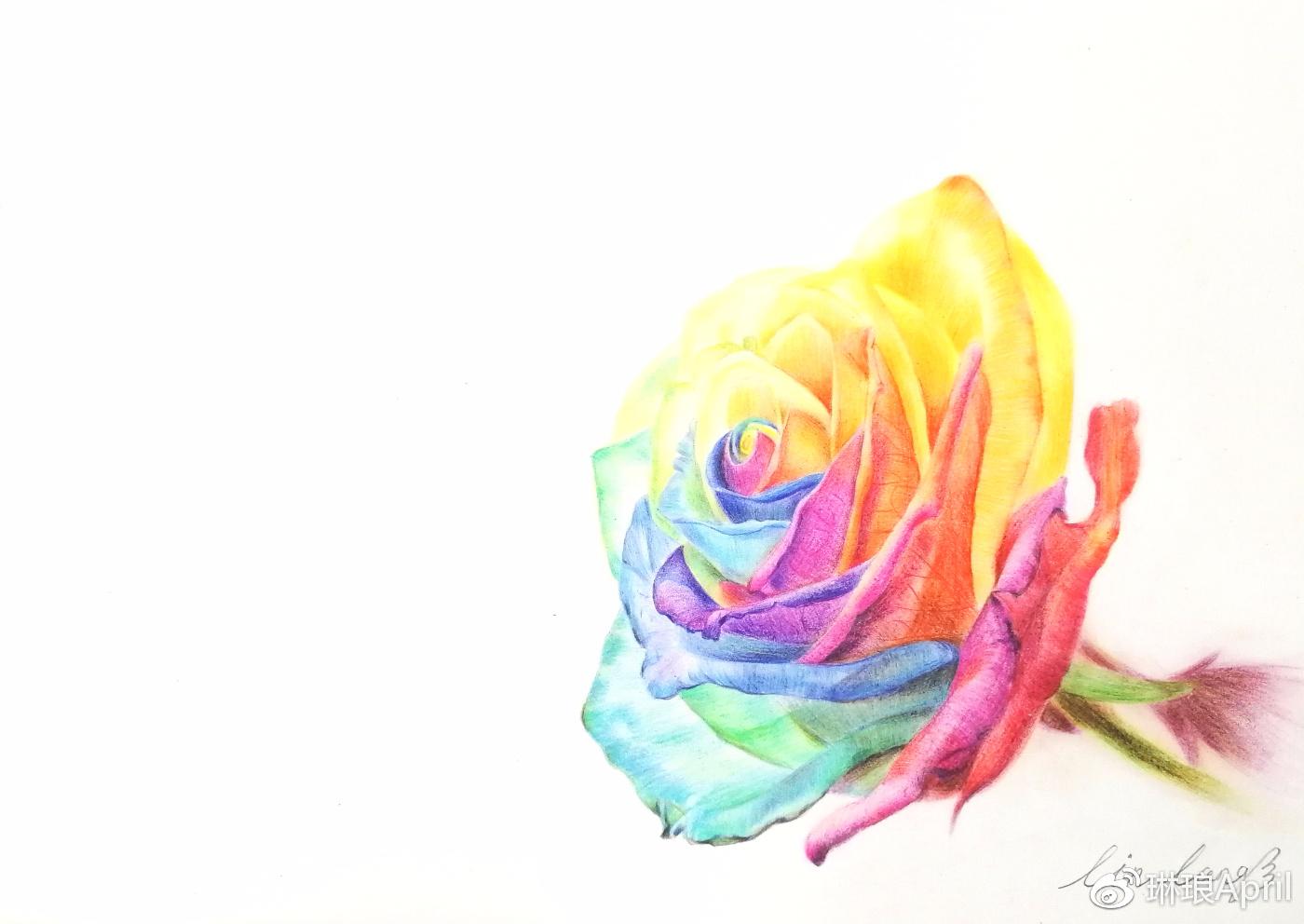 【手绘教程.17】彩铅七彩玫瑰