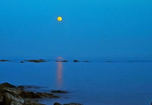 最美的海最美的月的吟唱——《仲月海花吟》山林子自然道德智慧诗