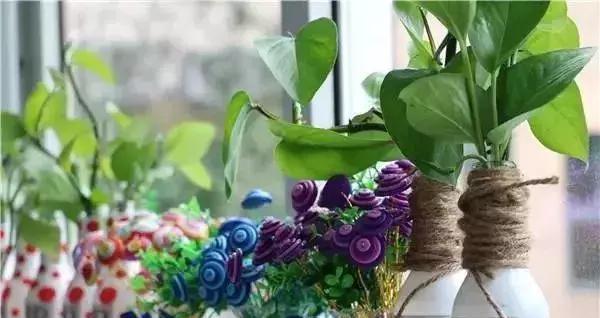 废旧物品打造创意幼儿园植物角,好清新!